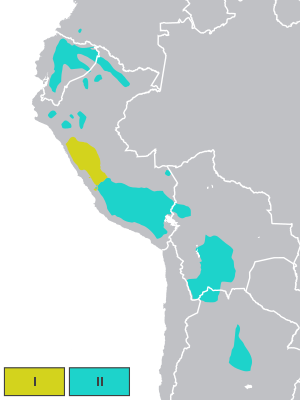 دارالترجمه رسمی زبان کچوآ