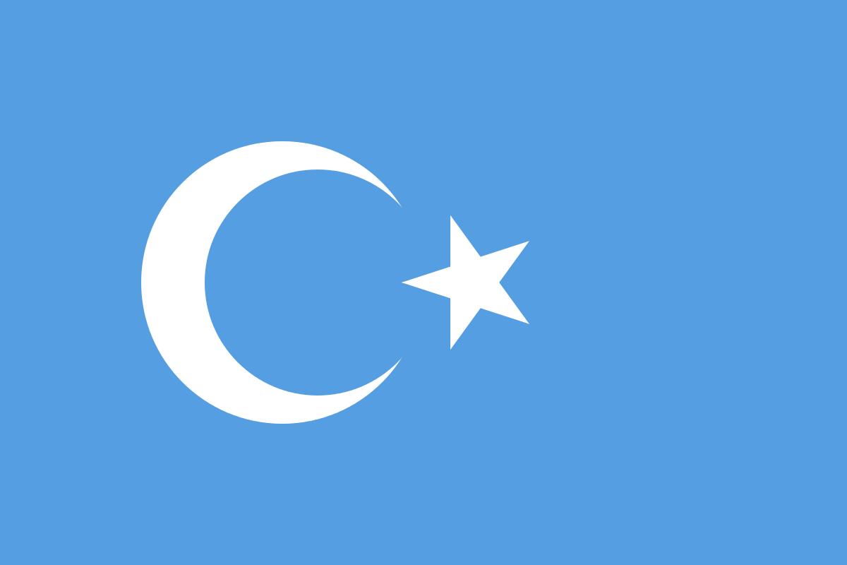 ترجمه زبان اویغوری