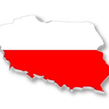 مقاله لهستانی