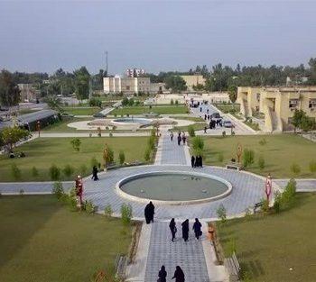 دانشگاه خلیج فارس بوشهر