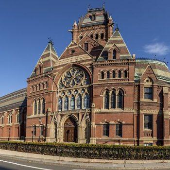 دانشگاه harvard university