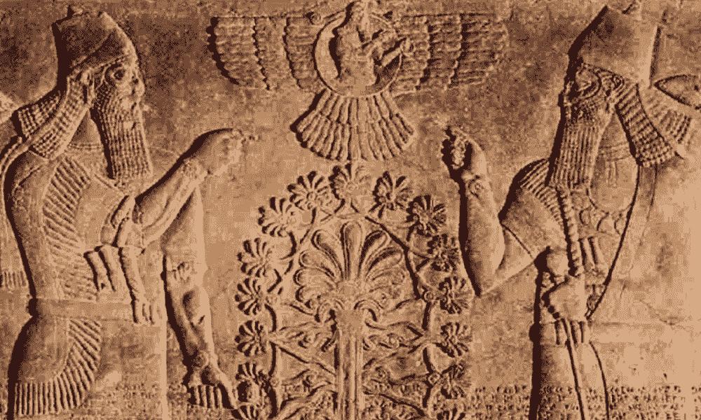 تاریخچه گیاهان دارویی در باستان