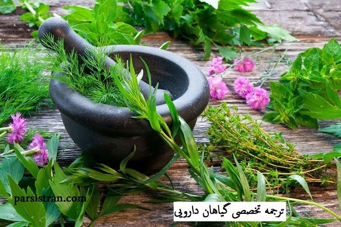 ترجمه تخصصی گیاهان دارویی