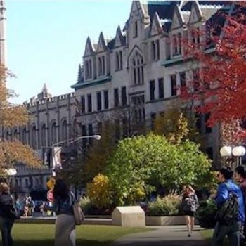 دانشگاه شیکاگو