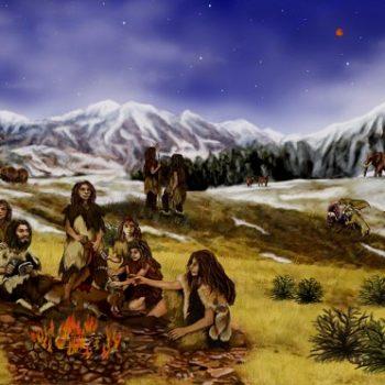 تاریخ شامل چندین گرایش مختلفی است که به مطالعه رویدادهای گذشته خواهد پرداخت
